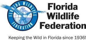 FWF2013 LogoProcessA